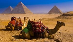 185663_egipt_piramidy_wielblady