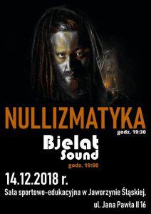 Koncert zespołu Nullizmatyka @ Hala sportowo-edukacyjna